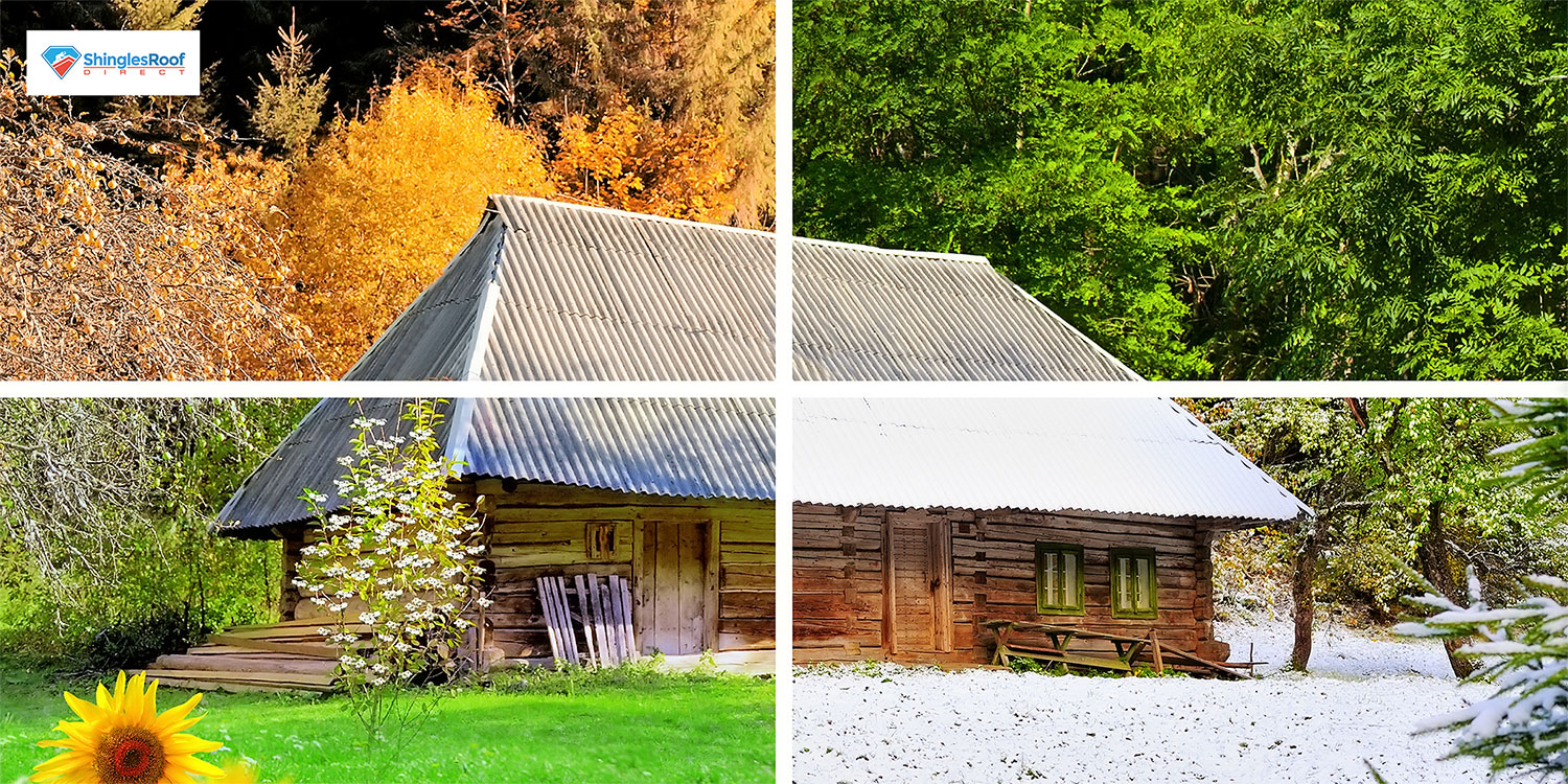How 4 Seasons in NC Torture & Damage Our Roofs